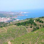 aop-banyuls-page-vins-doux-naturels